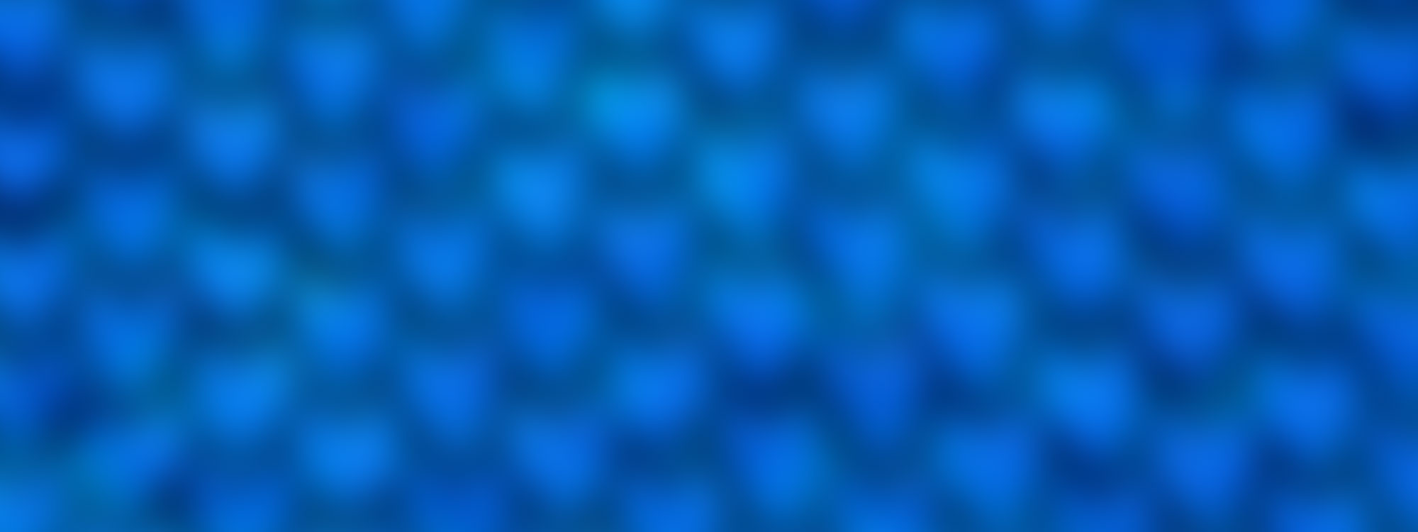 Blus_Scale_Texture_Store_Banner