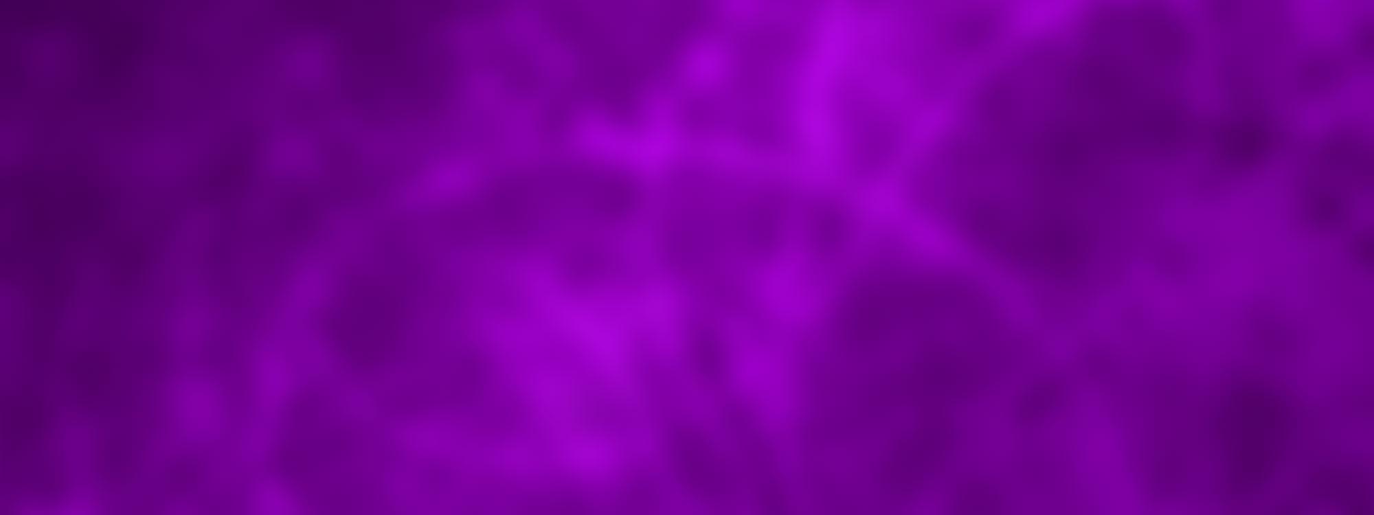 Purple_Texture_Store_Banner