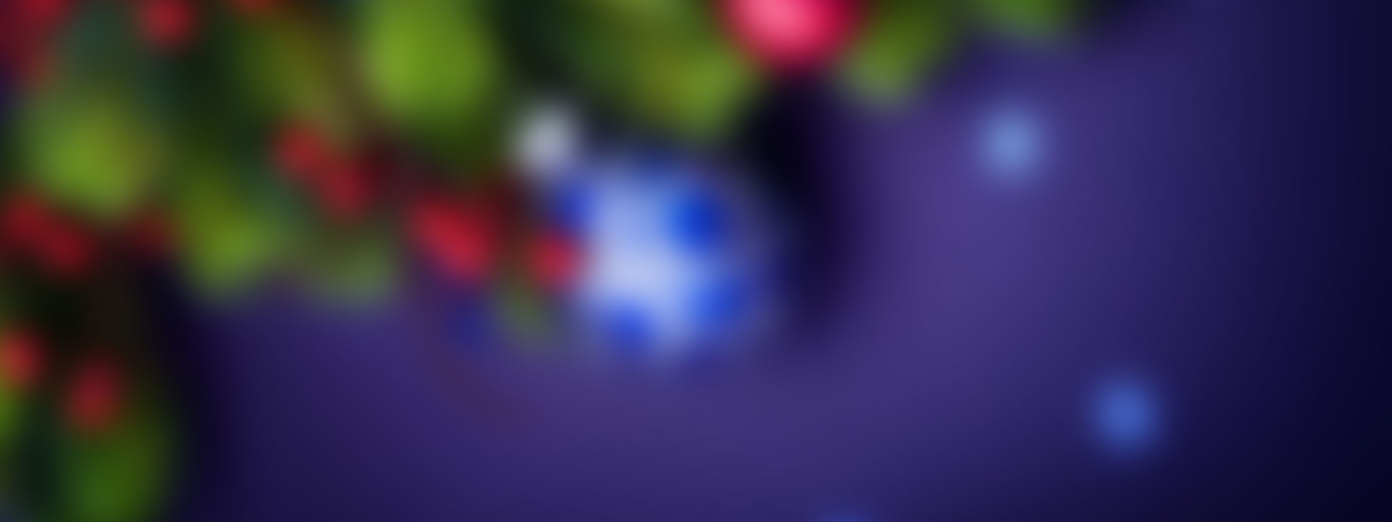 Year_End_2016_Store_Banner_02